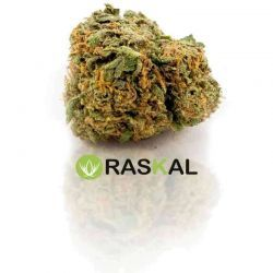 ak 47 cannabis light