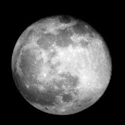 Moon Rock Ice - 1