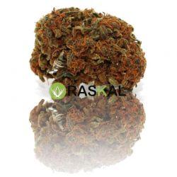 cannabis light mandarine