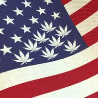 usa marijuana